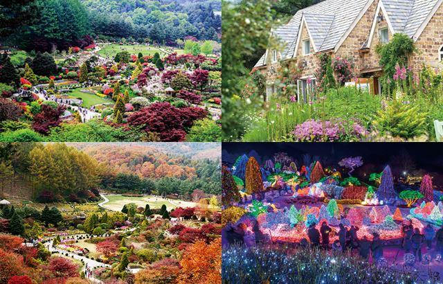 晨靜樹木園:四季