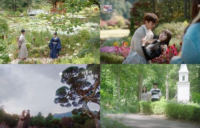 晨靜樹木園:韓劇畫面