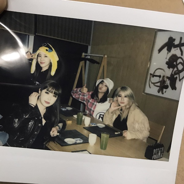 2NE1 十週年合照:Minzy